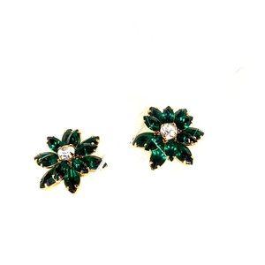 """You've got to be seen in Green"" earrings"